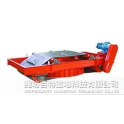 RCDD干式自卸式电磁除铁器供应厂家图片