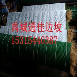 现有货源通佳生产抗冲生物毯 加筋抗冲毯 生物毯降到低图片