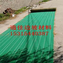 厂家供应抗冲生物毯 加筋防冲毯 防护草毯 通佳研发降价了图片