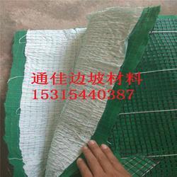 边坡治理 堤坝护坡 抗冲生物毯 加筋防冲毯 植生毯图片