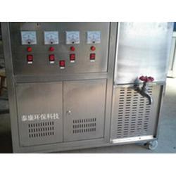 高品质智能型高浓度电解臭氧水机在哪可以买到图片