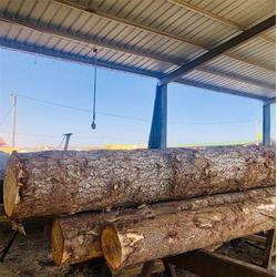 白松木方加工厂-佳润木材-东营白松木方图片