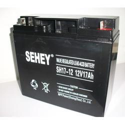 西力蓄电池NP24-12 12V24AH咨询简介 报价图片