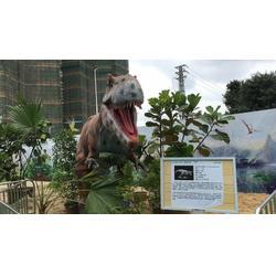 仿真机械恐龙展模型出租大型仿真恐龙出租厂家图片