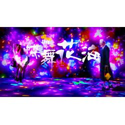 怀柔花灯、上海漫波、花灯艺术彩灯梦幻灯光图片