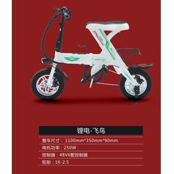 电动自行车上牌-安徽电动自行车-江苏邦能电动车简易(查看)图片