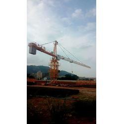 QTZ63塔吊出厂35万独立高度40m标准节尺寸1.6×2图片