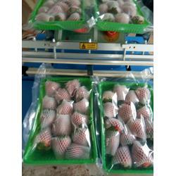 草莓-供应丹东热卖草莓种植图片