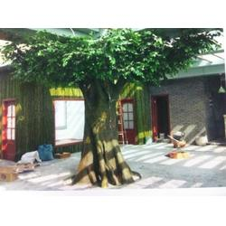 玻璃钢假树多少钱-专业的玻璃钢假树制作图片