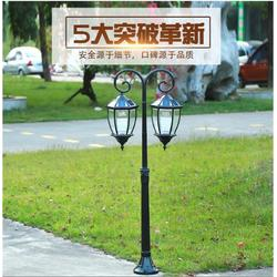 天津路灯-天津市大昌路灯图片