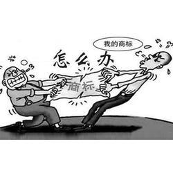 嘉兴商标、商标异议多少钱、杭州注册商标代理公司(优质商家)图片