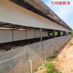 PVC涂塑布羊场卷帘布厂家直销-挡风羊舍卷帘布定做 养殖场卷帘布量大优价图片