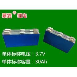 外卖车锂电池组-锂电池组-天成盛公司(查看)图片
