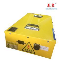 磷酸铁锂电池组-天成盛公司-磷酸铁锂电池组多少钱图片