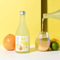 全套柚子果酒生产设备,小型果酒果醋生产线,刘士诚百冠机械图片