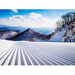 室外滑雪培训-辽宁可靠的双板滑雪图片
