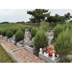 辽阳公墓-有保障的墓园规划铁岭双龙山公墓提供图片