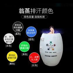 活瓷能量熏蒸缸 活瓷能量缸 巴马能量缸图片