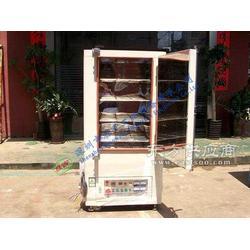 托盘式工业烤箱-标王工业设备图片