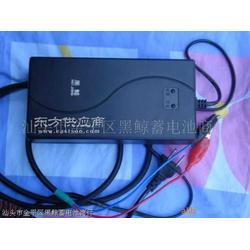 电动车充电器全自动正负脉冲电池修复充电器图片