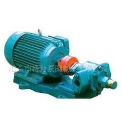 可调压式齿轮油泵图片