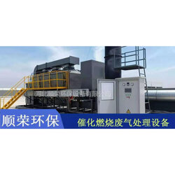 RCO蓄热式催化燃烧设备图片