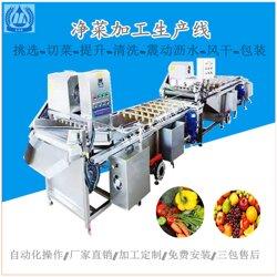果蔬去农残清洗线臭氧涡流洗菜线涡流净菜加工生产线图片