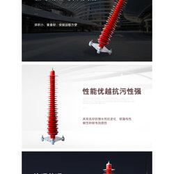 電站型氧化鋅避雷器YH10WZ-108/281哪里生產廠家好圖片