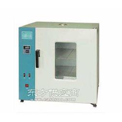 电热鼓风干燥箱电热恒温干燥箱图片
