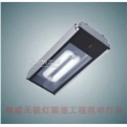 映盛节能隧道工程无极灯SD07隧道灯图片