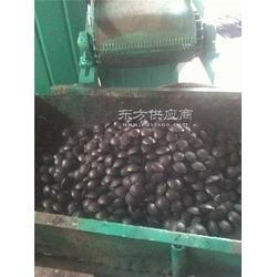 专用仪器仪表煤粉压球机|老城振华生产基地|煤粉压球图片