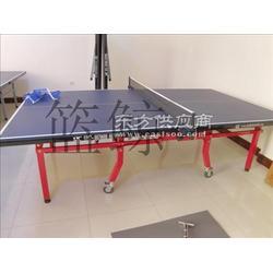 移动折叠乒乓球台种类室内专用球台图片