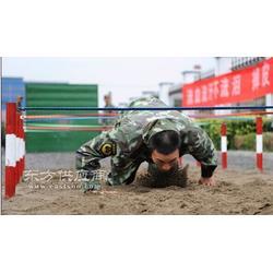 部队训练用低桩网厂家材质好才是真的好图片
