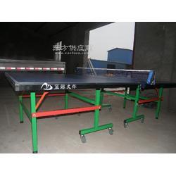 移动折叠式乒乓球桌厂家实力大品牌有保障图片