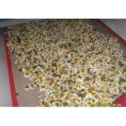 辣椒粉杀菌设备图片