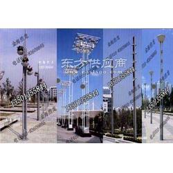 景观灯金海景观灯生产厂家图片