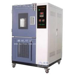 QLH-100高温换气式老化试验箱图片