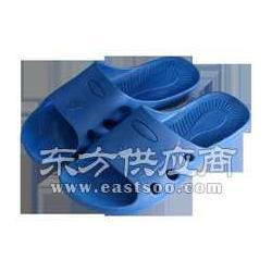 藍色防靜電拖鞋圖片