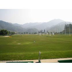 标准高尔夫练习场工程及立柱图片
