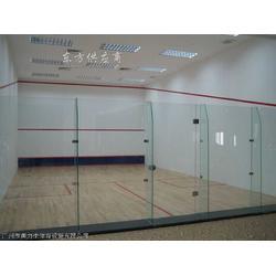 地产公司壁球馆工程壁球室工程图片