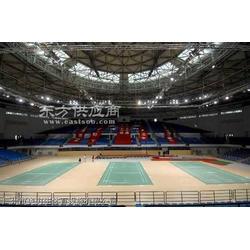 体育馆PVC羽毛球场排球场图片