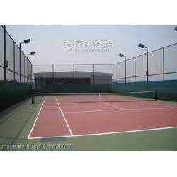 网球场篮球场工程壁球室工程图片
