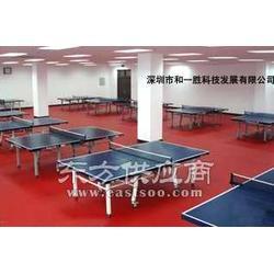 室内乒乓球地板胶乒乓球运动胶地板图片