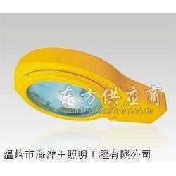 ntc9250|海洋王精品|高效投光灯|海洋王照明图片