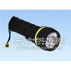 IMPA330261防水电筒图片