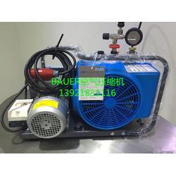 PE200宝华空气压缩机(BAUER)图片
