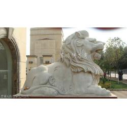 京狮港狮图片