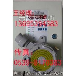 """""""一氧化碳检漏仪""""一氧化碳泄漏报警器图片"""