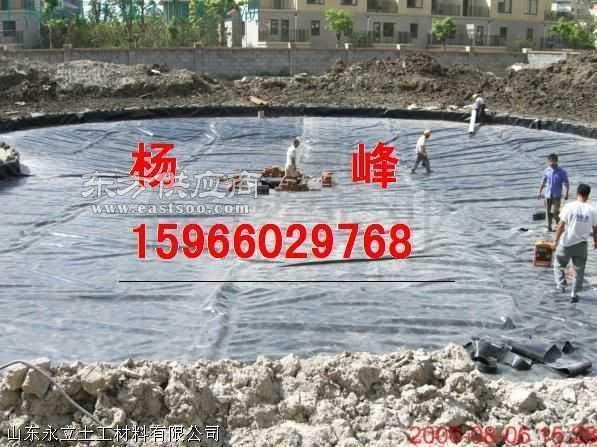 人工湖防渗处理.土工膜|复合土工膜|hdpe土工膜