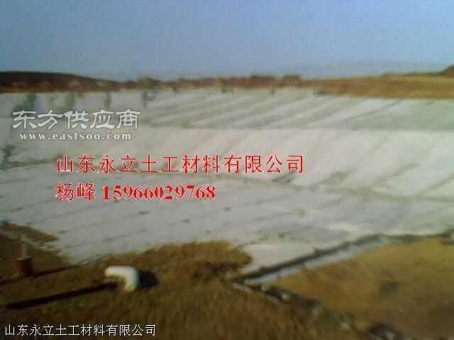 园林小区别墅水景溪流人工湖防渗防水工程材料